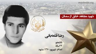 مجاهد شهید رضا قلعهبانی