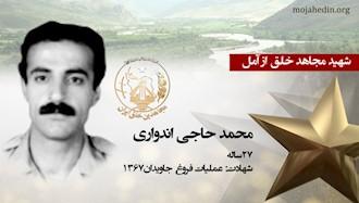 مجاهد شهید محمد حاجی اندواری
