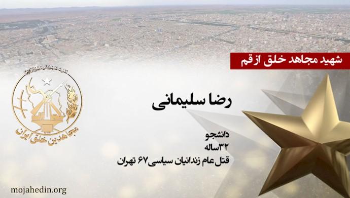 مجاهد شهید رضا سلیمانی