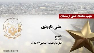 مجاهد شهید علی داوودی
