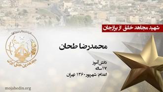 مجاهد شهید محمدرضا طحان