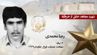 مجاهد شهید رضا محمدی