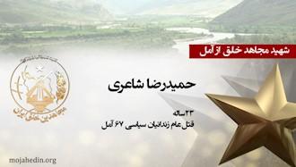 مجاهد شهید حمیدرضا شاعری