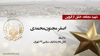 مجاهد شهید اصغر مجنونمحمدی