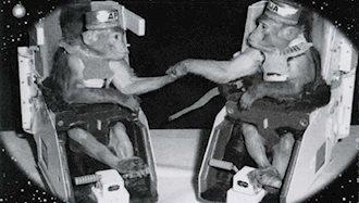 ۲میمونی که به فضا فرستاده شدند