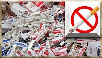 نزدیک به ۵میلیون انسان بر اثر دود سیگار میمیرند