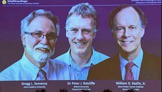 برندگان نوبل پزشکی ۲۰۱۹