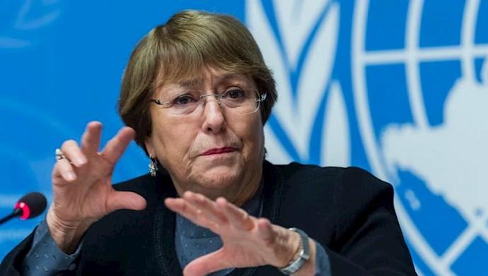 میشل باشله، کمیسر ارشد حقوق بشر سازمان ملل