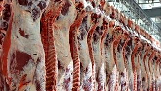 گرانی ۱۰۵درصدی گوشت گوسفند