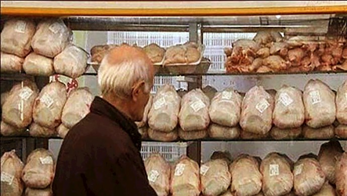 قیمت مرغ به مرز ۲۶ هزار تومان رسید