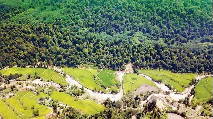 جنگلهای منطقه آقمشهد ساری