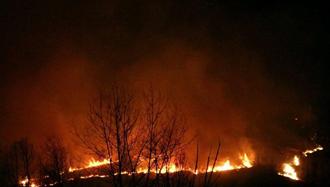 آتش سوزی  در جنگلھای گیلان
