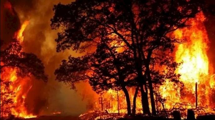 آتشسوزی جنگلهای خائیز