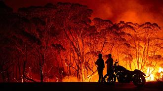 وقوع ۲۴۰ مورد آتشسوزی در ۷۴ روز گذشته در ۱۱ استان