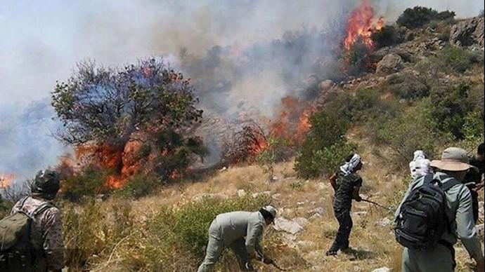 آتشی به جان جنگلهای زاگرس
