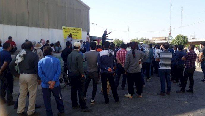 چهاردهمین روز اعتصاب کارگران نیشکر هفتتپه