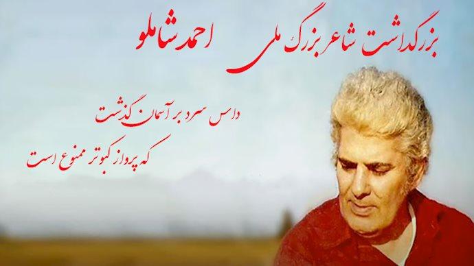 بزرگداشت شاعر بزرگ ملی، احمد شاملو