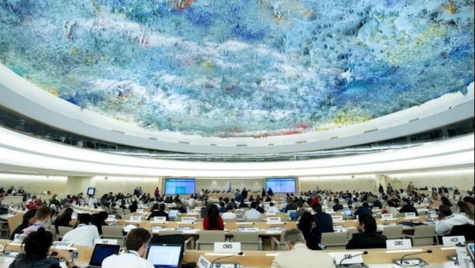 شورای حقوق بشر ملل متحد