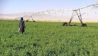 دشت مغان - عکس از آرشیو