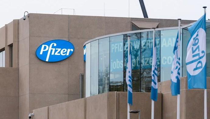 شرکت فایزر