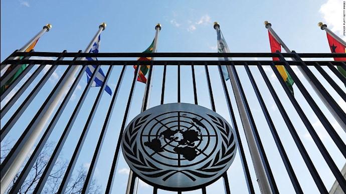 سازمان حقوق بشر ملل متحد