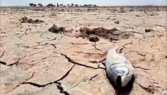 خشک شدن تالابها در ایران