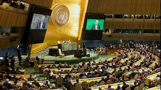 مجمع  سازمان ملل متحد