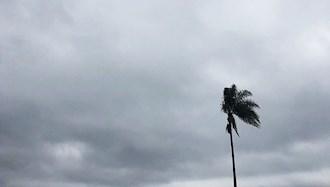 طلب باران