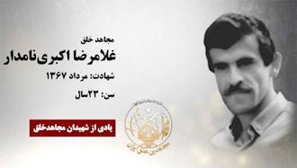 غلامرضا اکبرینامدار