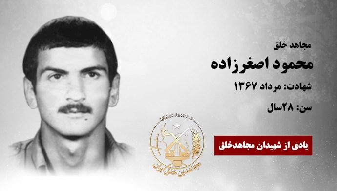 محمود اصغرزاده