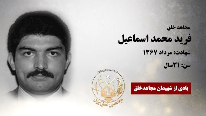فريد محمد اسماعيل
