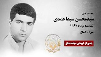 مجاهد شهید سیدمحسن سیداحمدی