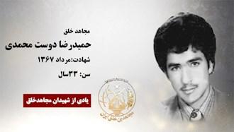حميدرضا دوست محمدي