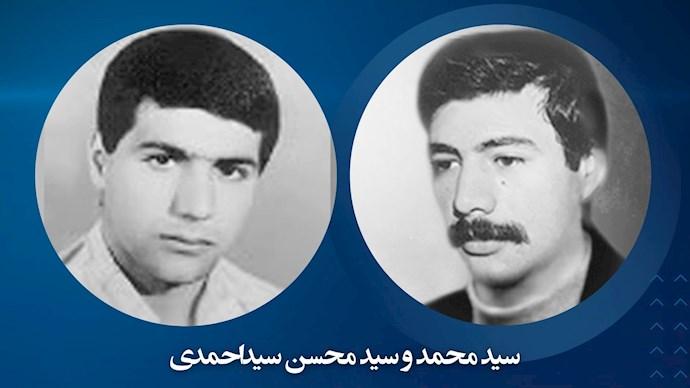 سید محمد و سید محسن سیداحمدی