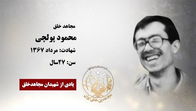 محمود پولچی