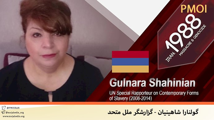 گولنارا شاهینیان - گزارشگر ملل متحد