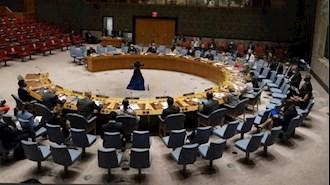 شورای امنیت ملل متحد