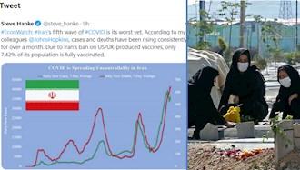 توییت استیو هنکی در ارتباط به فاجعه کرونا در ایران