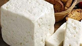 گران شدن پنیر